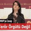 HDP SOLCU DEĞİL ŞOVENİST BİR PARTİDİR