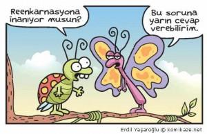erdil689 (2)